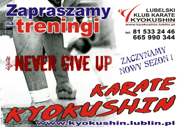 plakat karate starsi 2014